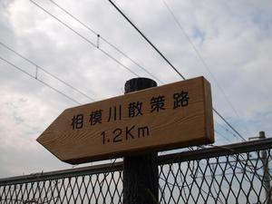 P4210017.jpg