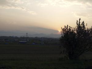 P4210096.jpg