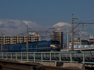 P3024531.jpg